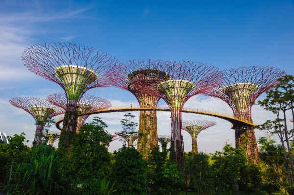 Singapore Cruise Stopover