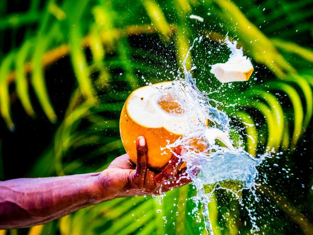 Holiday Inn Resort Vanuatu Gallery Image - Coconut Cutting