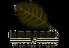 Moracea by Khao Lak Resort Logo