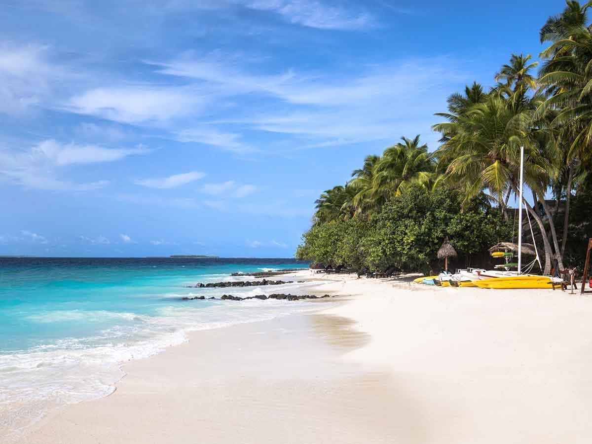 taj-coral-reef-beach