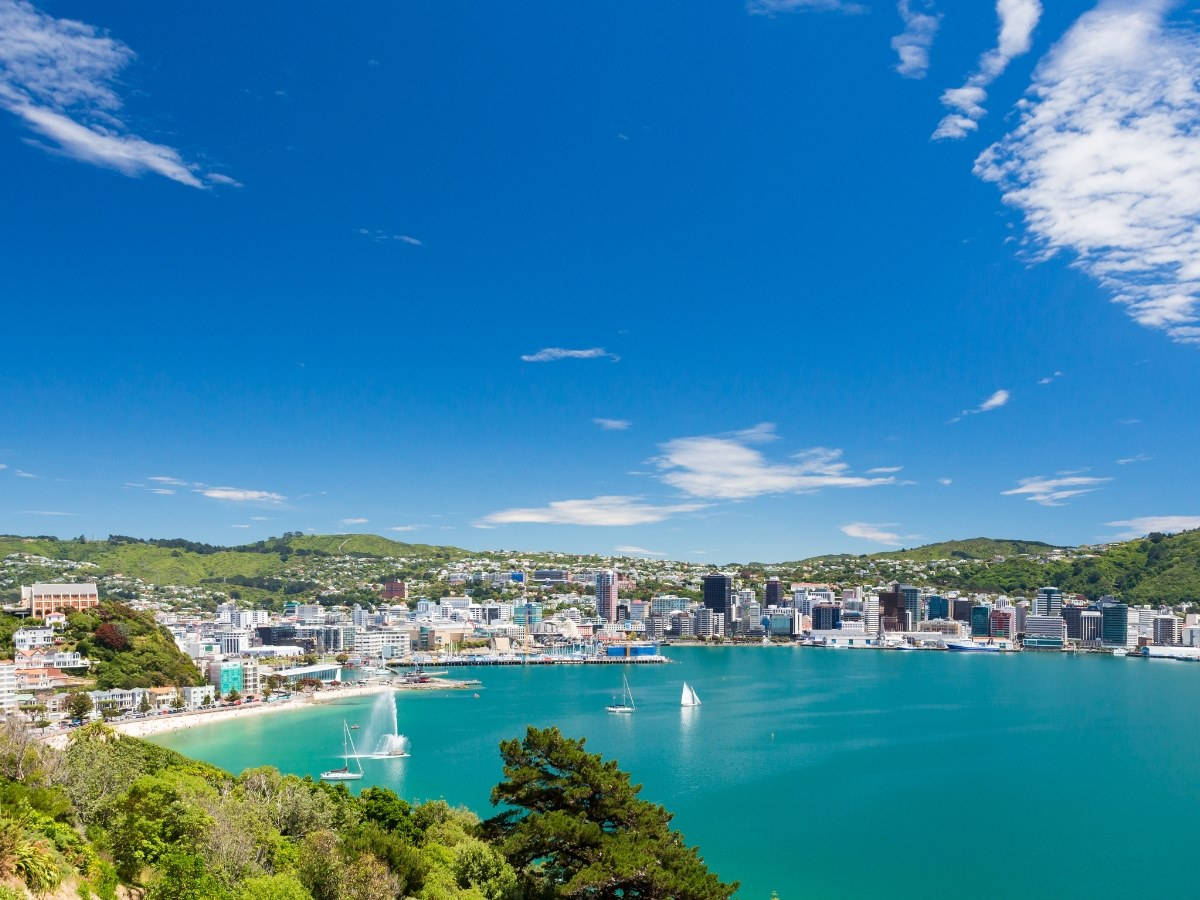 wellington new zealand gallery image