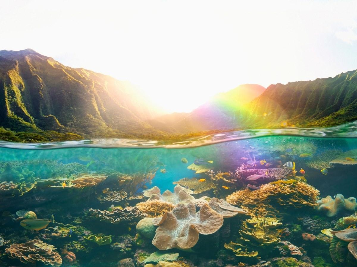 oahu hawaii united states of america gallery image
