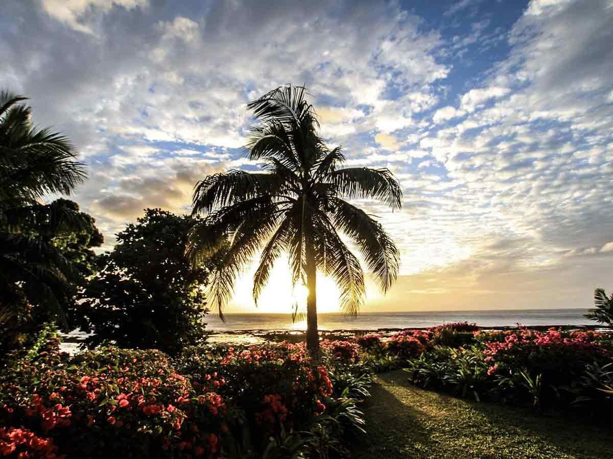 White-Grass-Ocean-Resort-garden