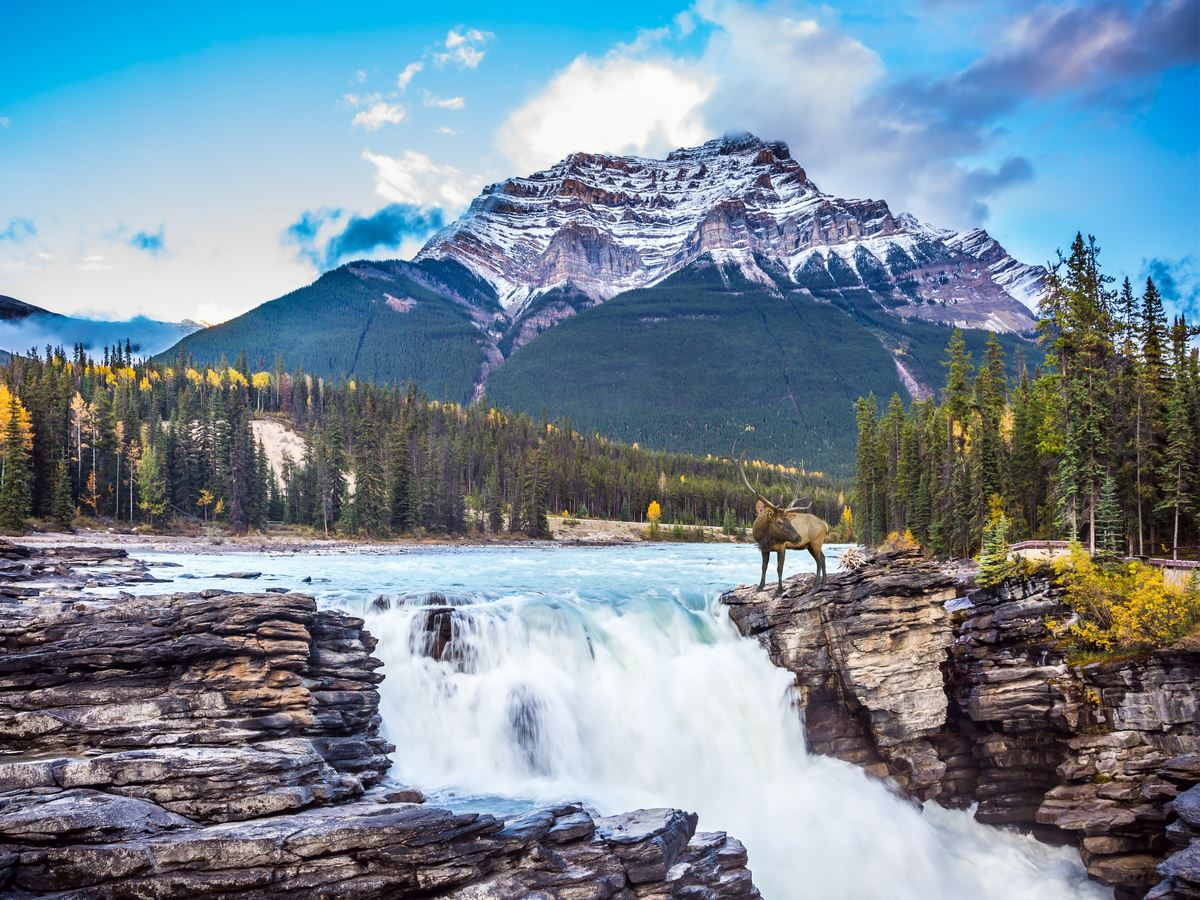 16 Day Breathtaking Canadian Rockies Tour & Alaska Cruise   Flight