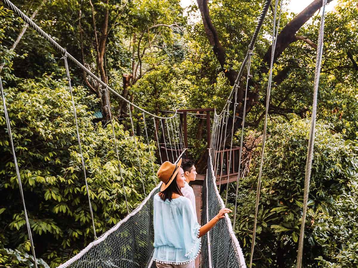 Shangri-La-Rasa-Ria-Resort-canopy-walk
