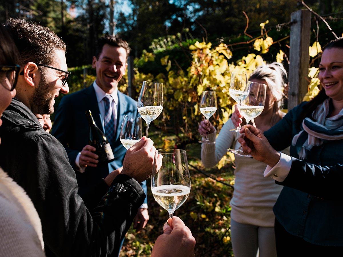 mount lofty house friends drinking wine